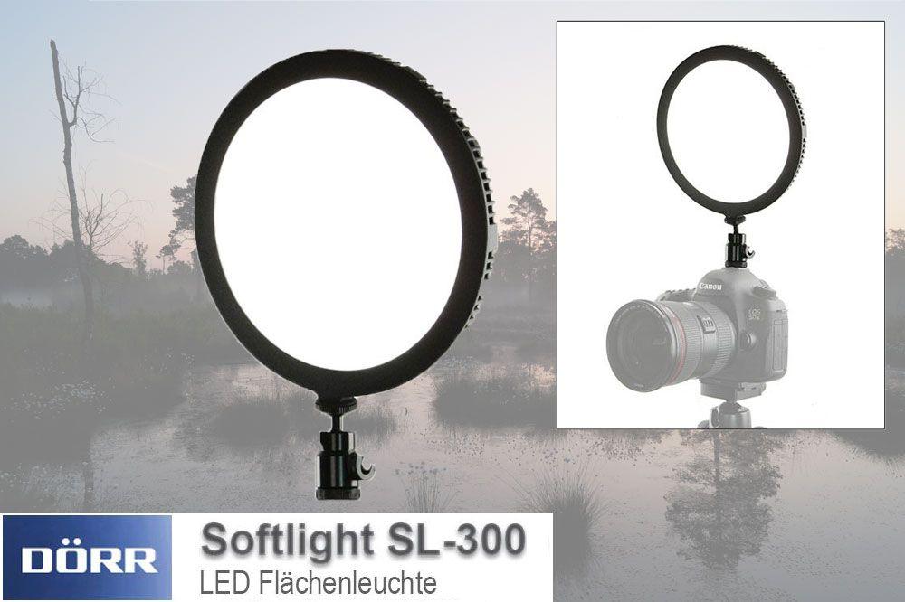 Dfm fotografia illuminazione da studio professionale